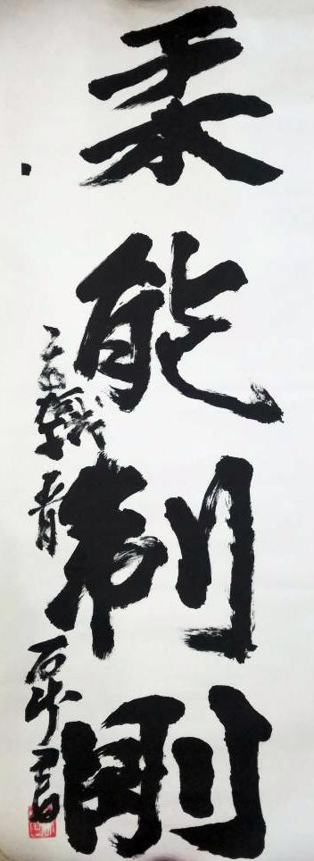 » La flexibilidad domina a la fuerza » 柔能制剛